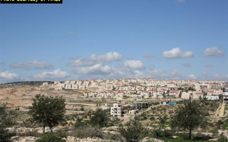 """In a Blatant Defiance for the International Community"", Israel approved a new colonial plan for 3280 Housing Units"