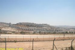 Escalated Israeli Colonial Activities in the occupied Eastern part of the city of Jerusalem