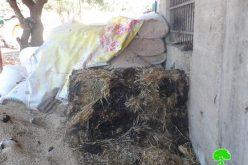 """إحراق مزرعة للأغنام وخط شعارات تحريضية من قبل """" مستعمرو دفع الثمن""""  في بلدة عقربا"""