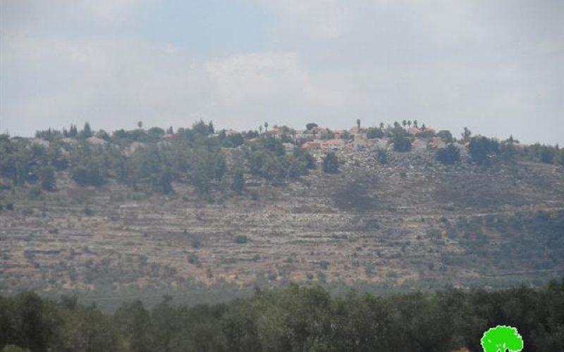 Land takeover in Arraba – Jenin Governorate