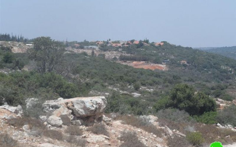 """Expansion work  in """"Yakir"""" settlement in Nablus Governorate"""