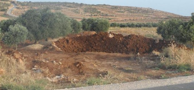 The Israeli army shuts down a number of Aqraba agricultural lands