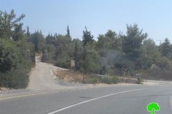 An Israeli Plan to Judaize Umm Safa village