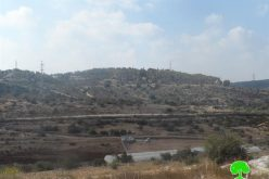 Maale Shomron puts hand on a piece of land in Qalqiliya