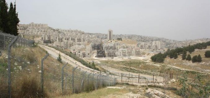 مع استمرار العدوان الاسرائيلي على قطاع غزة المحتل, اسرائيل تشن حربا على الممتلكات الفلسطينية في الضفة الغربية المحتلة