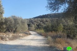 Notifying a residence and an agricultural road with stop work in Salfit
