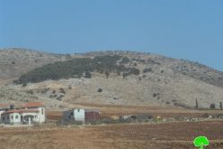 An eviction order on tens of agricultural dunums in Tubas