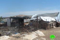 إخطارات بوقف البناء لمنشآت سكنية وزراعية في منطقة واد المالح