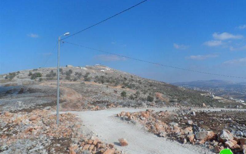 إعدام أشجار زيتون معمرة وسرقة ثمارها في قرية بورين