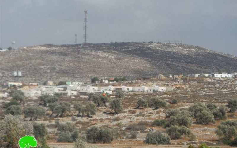 Attacks on residents from Kfar el-Lubad and agricultural equipments and crops theft