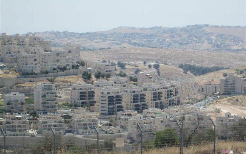 وحدات استيطانية جديدة تهدم عملية السلام المصادقة على بناء وحدات استيطانية جديدة محيط مدينة القدس