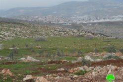 """إخطار بإخلاء عشرات الدونمات الزراعية في خربة """" أم الكبيش"""" في بلدة طمون / محافظة طوباس"""