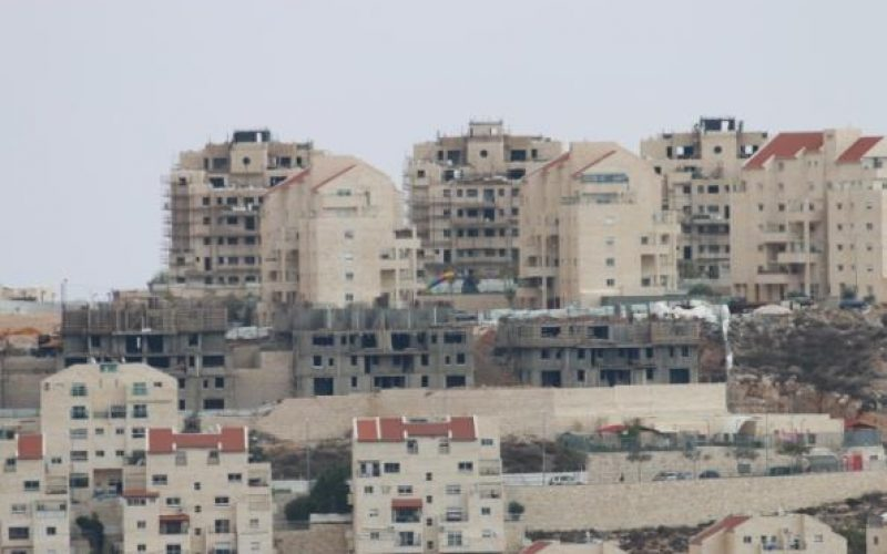 New Colonial Projects to take Place in the oPt for the Interest of the Israeli Settlement Enterprise