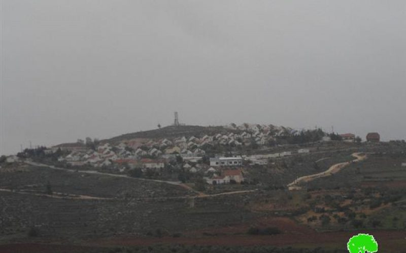 Advertisement about 221 dunums land grab from Nablus