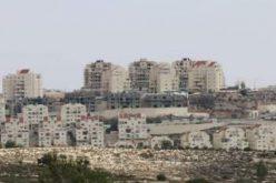 فلسطين تودع العام 2014 مع تعاظم الأزمة الجيوسياسية في الأراضي المحتلة