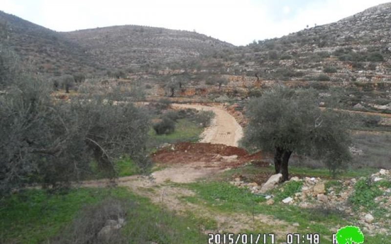 The Israeli occupation demolishes a segment of a agricultural road linking Jilijliya to the eastern farm
