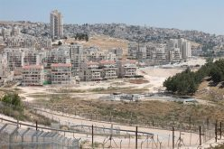 """During the Past Four Years"", <br>  Accumulated 184 million NIS, to Subsidize the Settlement Project on the oPt"