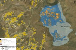 Life Disparity between the Palestinian Community Tuqu and the illegal Israeli Settlement Tekoa