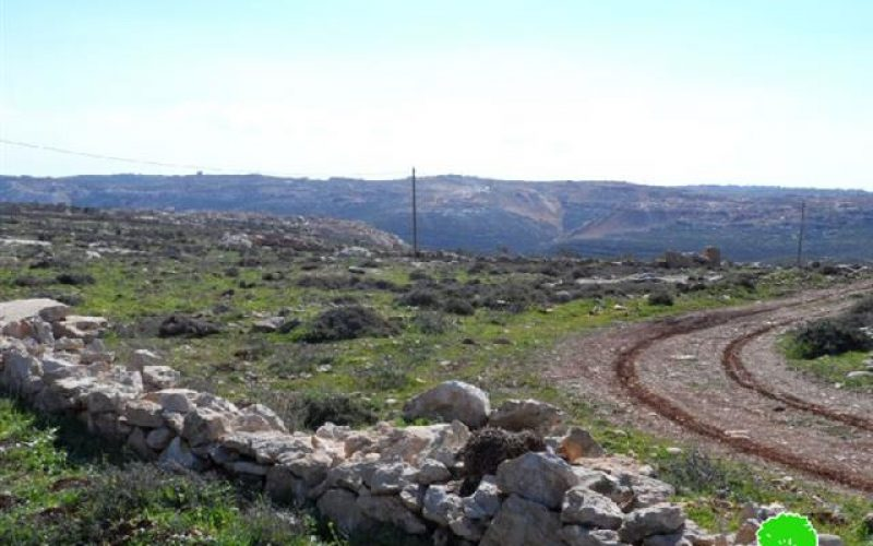 إخطارات بمصادرة أراضي زراعية في بلدة الشيوخ / محافظة الخليل