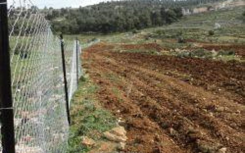 An Nabi Samuel land reclamation project attacked by Israeli settlers in northwest Jerusalem city.