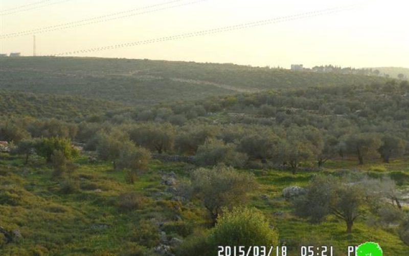 """إخطارات بإخلاء أراض زراعية في منطقة """" واد قانا"""" / محافظة سلفيت"""