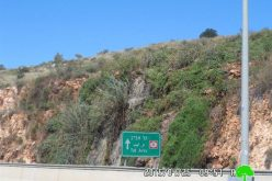 Barkan colony chemical wastes destroy the environment of the Salfit village of Bruqin