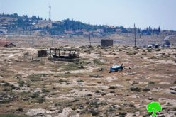 Colonists attack Khirbet Susiya land