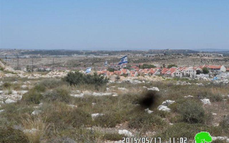 """مستعمرو """" افني حيفتس"""" يستولون على أراض جديدة في عزبة  شوفة"""