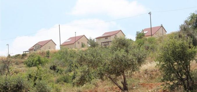 Hayovel outpost pollutes and destructs  the agricultural environment of Qaryut village