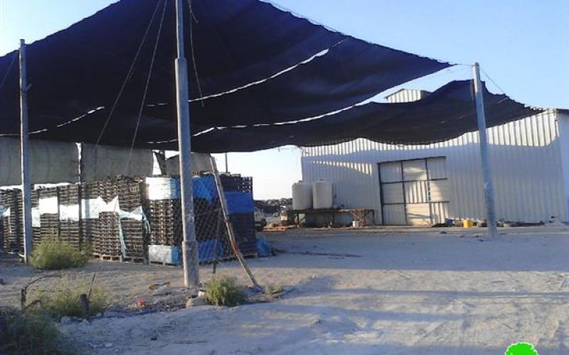 The Israeli occupation notifies a Dates Factory of demolition