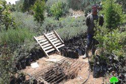 إخطار بهدم 3 آبار مياه في قرية تعنك / محافظة جنين