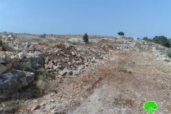 Demolishing cistern, ravaging lands and uprooting trees in the Hebron village of Surif