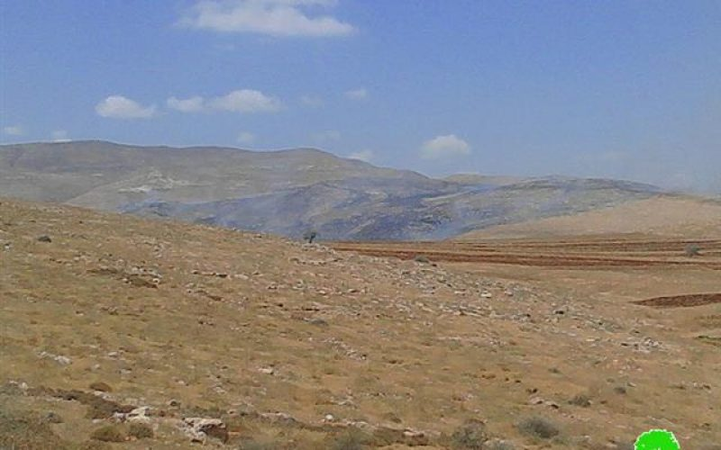 Torching 2000 dunums of pastoral lands in Al-Tawil hamlet due to military training