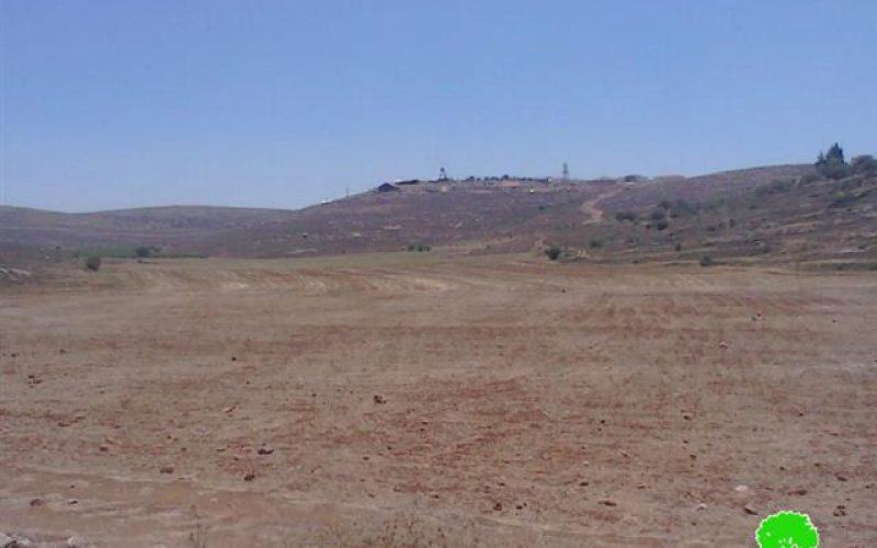 """مستعمرو البؤرة الاستعمارية """" يش كودش"""" يخربون 13 دونم مزروعة بالقمح في قرية جالود"""