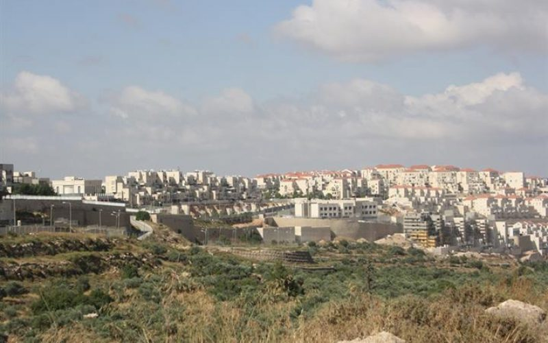 """Built on Private Palestinian Lands""  New facilities in the illegal settlements of Giv'at Ze'ev and Mod'in 'Ilit"