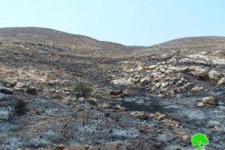 إحراق مساحات واسعة من الاراضي الزراعية على يد المستعمرين وجيش الاحتلال شمال شرق محافظة رام الله