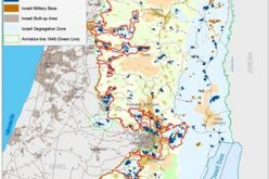Israeli Settler assaults against land and property during the second quarter of 2015, (April – June) / 2015