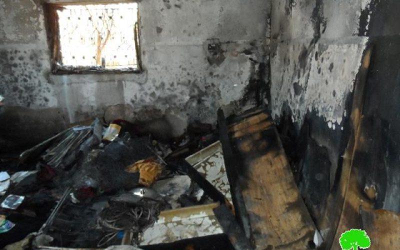 """الطفل """" علي دوابشة"""" … بأي ذنب يحرق !؟ <br> مستعمرون متطرفون يحرقون عائلة فلسطينية وهم نيام !!؟؟"""