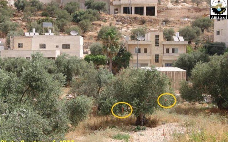 سلطات الاحتلال الاسرائيلي تضع علامات جديدة على أراضي مدينة بيت جالا تمهيدا لاستكمال بناء جدار العزل العنصري