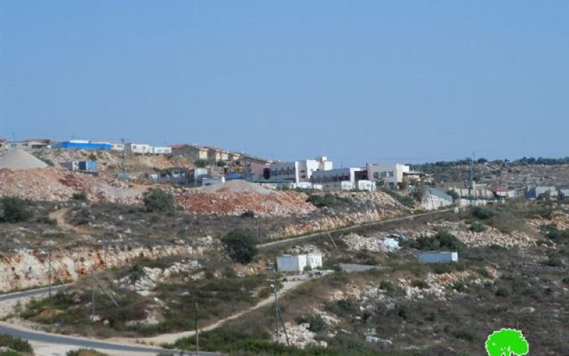 Establishing new colonial quarter in Revava colony at the expense of Deir Istiya village