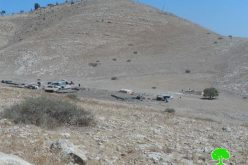 Demolition of agricultural and residential structures in the Palestinian Jordan Valley Al-Ghoor