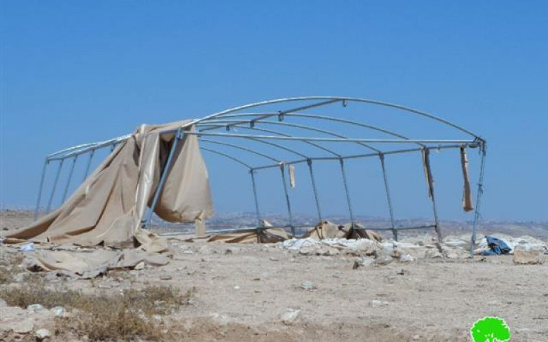 Demolition orders on two tents in Yatta hamlet of Al-Mafqara
