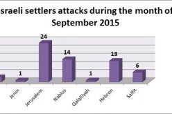 Israeli Violations in the Occupied Palestinian Territory –September 2015