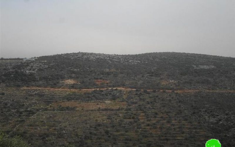 Evacuation notice on an agricultural land in Salfit