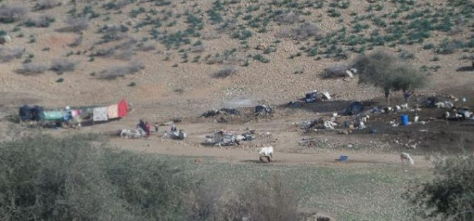 The Israeli occupation confiscate tents gifted by the Red Cross to shelter people affected by demolition