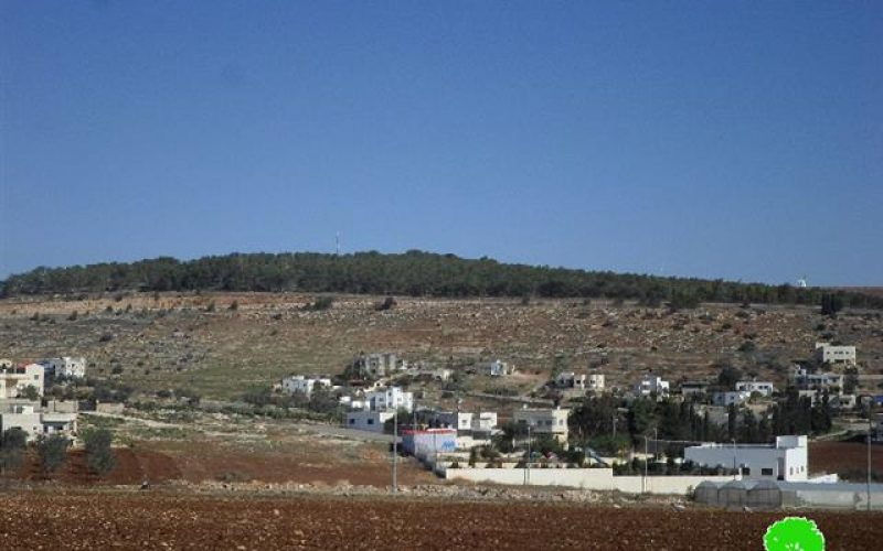 Meirav colony: a real threat on Jalbun lands