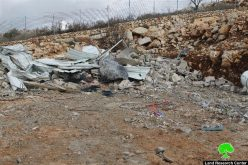 The occupation Municipality oblige Jerusalem man to self -demolish his barn