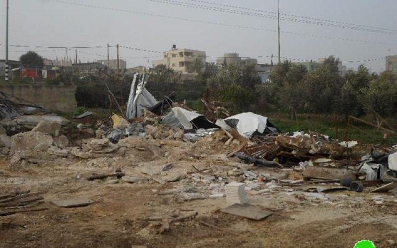 The occupation forces demolish a carpentry workshop and a sheep farm in Qalqiliya
