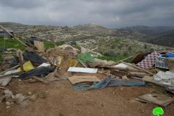 The Israeli Occupation Forces demolish a number of structures in the Bedouin community of Arab Al-Kaabnah