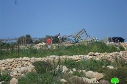 Israeli Occupation Forces demolish two agricultural rooms in Bilin